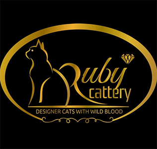 RUBYCATTERY 2020